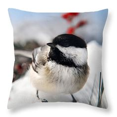 "Chilly Chickadee 14"" x 14"" Throw Pillow by Christina Rollo.  Our throw pillows are made from 100% cotton fabric and add a stylish statement to any room.  Pillows are available in sizes from 14"" x 14"" up to 26"" x 26"".  Each pillow is printed on both sides (same image) and includes a concealed zipper and removable insert (if selected) for easy cleaning."