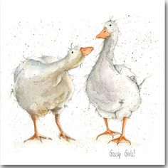 Goose Greeting Card - 'Gossip Girls' - Blank Inside, Barnyard, Watercolor, Bird and Animal Birthday Cards - Aquarell Malen Watercolor Texture, Watercolor Animals, Watercolor And Ink, Watercolor Paintings, Animal Sketches, Animal Drawings, Art Drawings, Zentangle Drawings, Art Canard