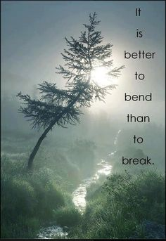 Better to bend than break