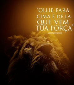 Lion Of Judah, Love Words, Positive Thoughts, Words Quotes, Bible, Inspirational Quotes, Lettering, God, Determination Quotes