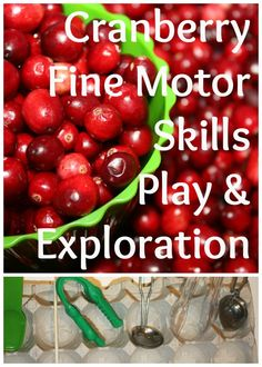 Cranberry Fine Motor Skills Play from Little Bins for Little Hands