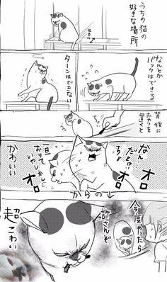 埋め込み Animals And Pets, Cute Animals, Anime Comics, Cat Art, Mammals, Cats And Kittens, Dog Cat, Geek Stuff, Cartoon