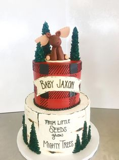 ADORABLE cake for your little lumberjacks first birthday or baby shower! - ADORABLE cake for your little lumberjacks first birthday or baby shower! Lumberjack Cake, Lumberjack Birthday Party, 1st Boy Birthday, 1st Birthday Ideas For Boys, Birthday Cupcakes, Birthday Parties, Baby Shower Niño, Baby Shower Themes, Shower Ideas