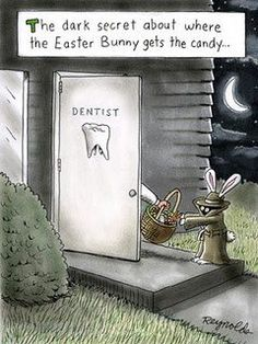 Easter chocolate doesn't have to ruin your smile! Enjoy your treats and practice good oral hygiene to protect your teeth with these great dental tips. Humor Dental, Radiology Humor, Nurse Humor, Dental Hygiene, Dental World, Dental Life, Happy Dental, Funny Easter Pictures, Funny Images