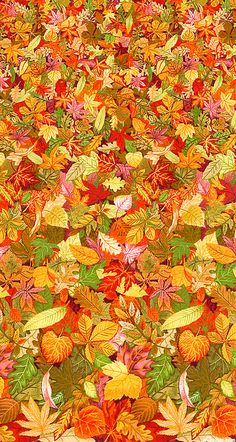 Jump into a pile of Autumn leaves. Hojas otoñales.
