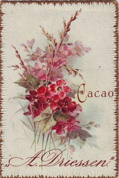 All sizes | cacao driessen flower spray embossed 2 | Flickr - Photo Sharing!