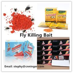 Fly Killing Bait Powder Supplier High effective Contact us for your own brand business now!!! Email: stephy@cnninger.com Whatsapp:86 18867650058 www.cnninger.com Glue Traps, Business Branding, Bait