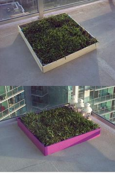 DIY dog potty patch with REAL grass! Great for an apartment patio! Make the frame taller so it wont be as messy either :) perfect for those late nights you dont want to have to walk the dog out so far to potty.