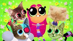 Kitty Picnic |Teen Titans Go! Episode 49 Dreams Clip
