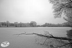 Lac de La Warenne. Janvier 2017. © Stéphane SALIO #Ardennes #France