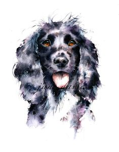 Pet portrait painting of a cocker spaniel by watercolour artist jane davies