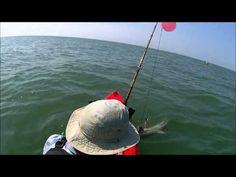 2 sharks in a Pescador 12 kayak.  High Island, TX