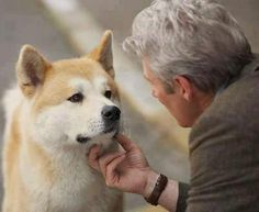 Love and loyalty goes both ways. Akita Dog, Black Lab Puppies, Dogs And Puppies, Corgi Puppies, Richard Gere Movies, Hachi A Dogs Tale, A Dog's Tale, Japanese Akita, Pets