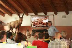 Corso di formazione per il monitoraggio dello Stambecco (Foto di L.Zamprogno) rivolto alle GEV e ai volontari - intervento di B.Bassano del Parco Nazionale del Gran Paradiso (www.uomoeterritoriopronatura.it).