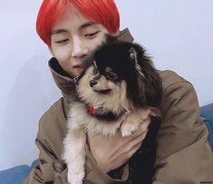 Bts Dogs, V Video, Fall In Luv, Bts Funny Videos, Min Holly, Pomeranian Puppy, Jungkook Aesthetic, Bts Group, Bts Taehyung