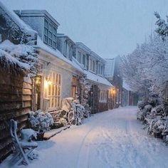 Cozy winter stroll