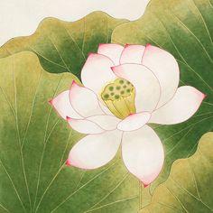 HANA SEO  Lotus   Pigment on Mulberry Paper 한지에 분채,봉채, 70x70(cm), 2013