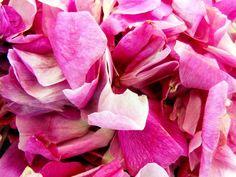 bradea-sirop-dulceata-de-trandafiri-natural (2) Gin, Natural, Rose, Flowers, Plants, Sweets, Syrup, Canning, Pink