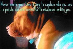 Misunderstanding Quote ~ So true ~ for animals and humans.  ♥Pitbulls