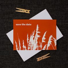 orange toi toi save the date card Traditional Weddings, Traditional Wedding Invitations, Save The Date Wording, Save The Date Cards, Orange Color, Colour, Wedding Inspiration, Wedding Ideas, Orange Wedding