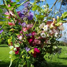 Spring flower bouquet, with astrantia, campanula, snapdragons, feverfew and more, all grown on my garden flower farm.