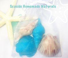 SEASIDE SHELL SOAPS | Beach scent Guest Soap | Beach Wedding | Gift | Beachy Christmas | Spa | Organic Oils | 2+2 | Seashell Favors