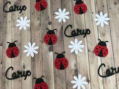 Ladybird confetti Ladybug confetti Ladybug theme Ladybird | Etsy