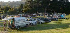 Freedom campers' vehicles at Warrington domain. Photo / Linda Robertson