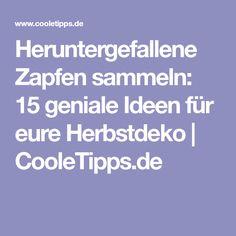 Heruntergefallene Zapfen sammeln: 15 geniale Ideen für eure Herbstdeko | CooleTipps.de