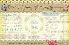 Calligraphy Borders & Ornaments for Design