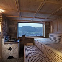 Finnish sauna / commercial / for indoor use