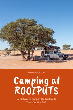 Camping at Rooiputs Hiking Essentials, Okavango Delta, Two Rivers, The Dunes, Africa Travel, National Parks, Camping, City, South Africa