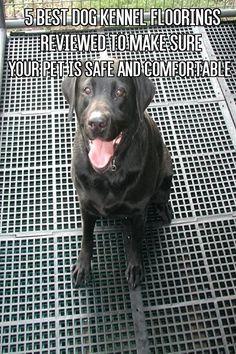 flooring for dog kennel