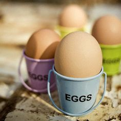 8 Egg-cellent facts about eggs... About as much as you want to know about the incredible egg!  The truth about whether eggs are healthy, why we dye eggs for Easter, the difference between brown and white, and more.  Fun and informative!