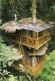 This treehouse is part of a treehouse community development project in Costa Rica.