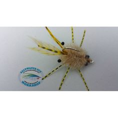 crab flies - Google Search