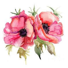 Stylized Poppy Flowers Illustration ❤ liked on Polyvore featuring flowers