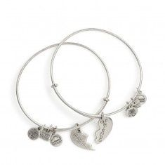 Alex and Ani Best Friends Set of 2 Charm Bangle Bracelets - Russian Silver Finish - Item 19276658 Alex And Ani Bangles, Bangle Bracelets With Charms, Alex And Ani Jewelry, Bangle Set, Bracelet Set, Silver Bracelets, Annie Bracelets, Lokai Bracelets, Silver Rings