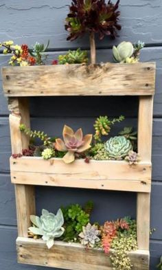 You may finish your pallet planters with nice touches like appropriate paints of any color, perhaps those who match your yard décor best. You can get some plant ideas which go well with each DIY pallet planter. Visit for more ideas Diy Planters, Garden Planters, Wood Pallet Planters, Balcony Garden, Succulent Planters, Terrace, Ideas For Planters, Succulent Wall Diy, Succulent Outdoor