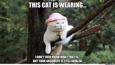 your argument is invalid memes   Your Argument Is Invalid