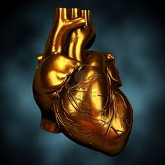 Morbid but interesting. Heart vs. Brain death. But what about soul? So many hollow people roaming the Earth nowadays.
