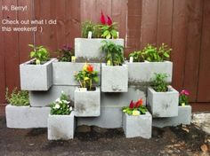 Very cool and inexpensive way to make flower bed out of cement blocks.