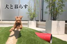犬と暮らす庭・エクステリア