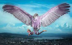 Her last flight with Vultureair | by John Wilhelm is a photoholic
