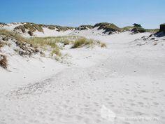 Die Dünen von Dueodde - Bornholms schönster Sandstrand an der Südspitze der Insel. #dünen #dueodde #strand #ostsee #bornholm #insel #dänemark