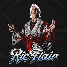 Wrestling t-shirts sold by over 1500 wrestlers directly. Official apparel providers for AEW, NJPW, Impact & Brian Cage, Lucha Underground, Ric Flair, Space Mountain, Record Art, Wrestling Superstars, Sports Photos, Old School, Lucha Libre