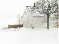 Pamela Schmieder Let It Snow | Flickr - Photo Sharing!
