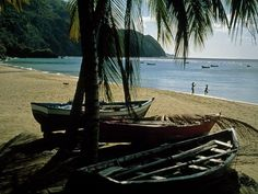 """Tobago """"Old Caribbean"""" I want to be right there on that beach...."""