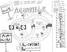 Acids, Bases & Salts Organized & Engaging Worksheets for