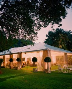 The clear plastic sides of the classic tent allowed guests to take in the beautiful scenery of Napa Valley. The structure was framed with small topiaries.